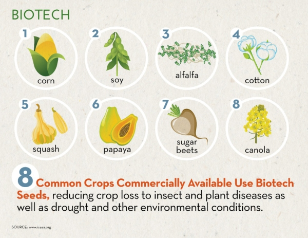 biotechnology in philippines then and now