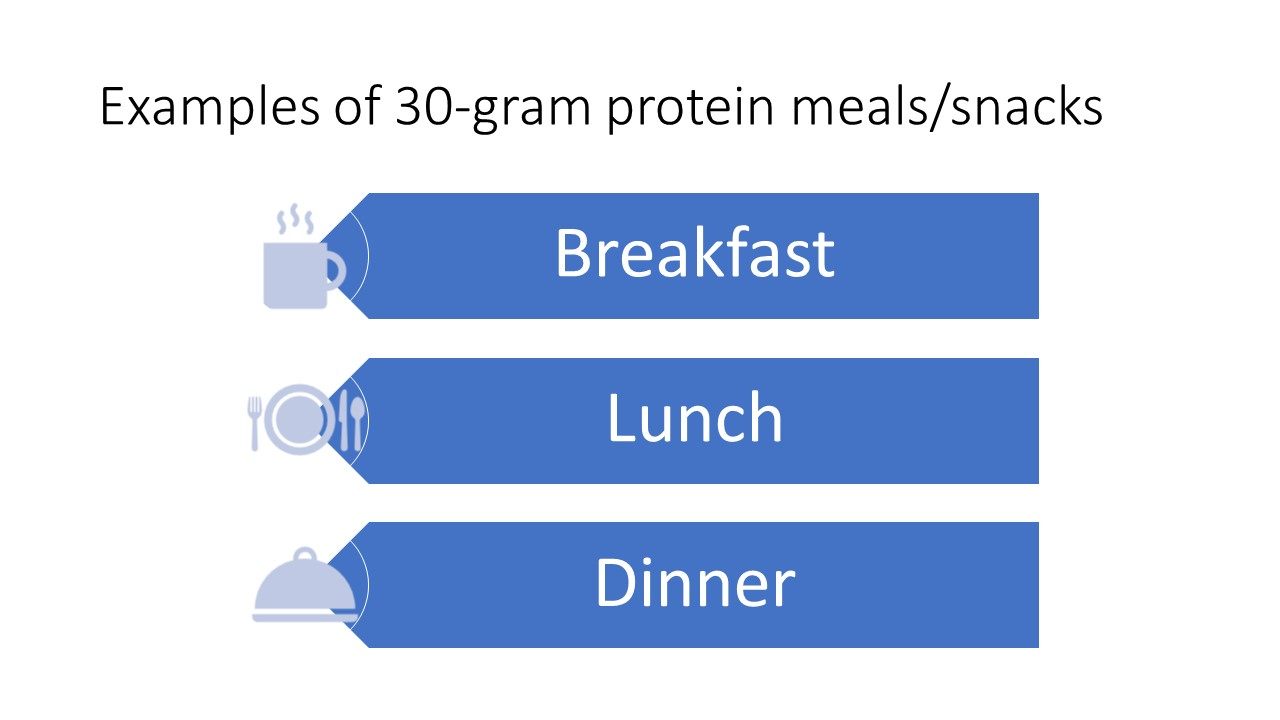 Examples of 30-gram protein meals